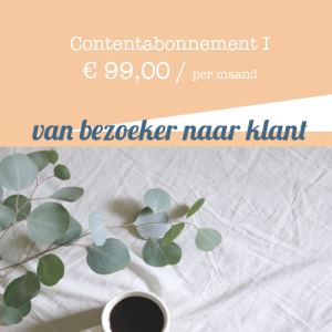 Contentabonnement I #1 - Gabriëlla Media - tekstschrijver