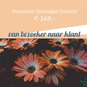Pinterest Strategie Consult door jouw Pinterest Expert